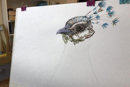 Watercolour Fundamentals
